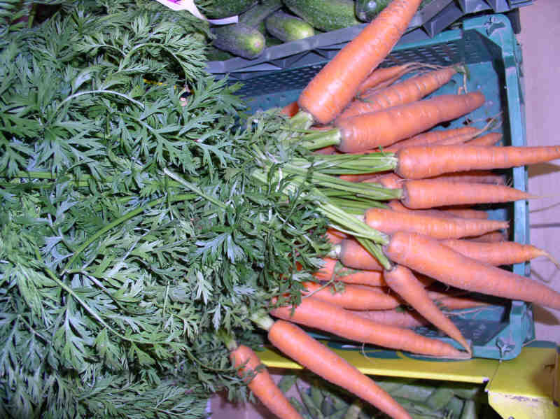 la ferme vierling les ar mes d 39 alsace les carottes en botte comme les carottes classiques. Black Bedroom Furniture Sets. Home Design Ideas